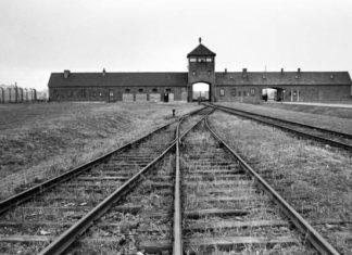 En skrämmande syn för alla, infarten till Auschwitz Foto: Bildbyrån
