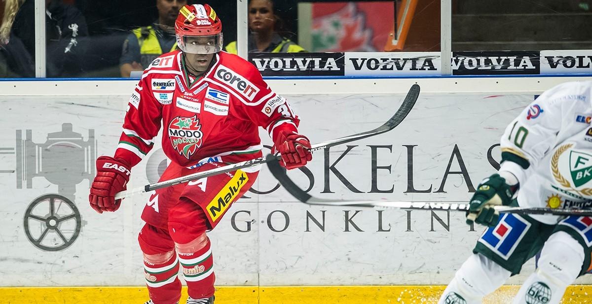 Hockeyallsvenska klubben tar in forward på tryout