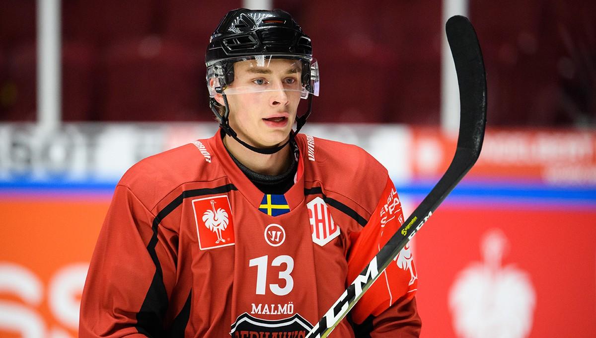 Hockeyettan-klubben lånar back från Hockeyallsvenskan