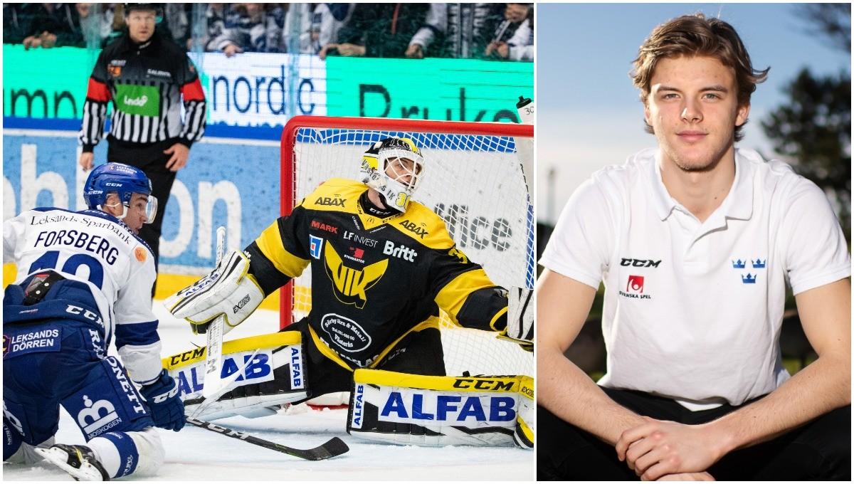 JVM-målvakten utsedd till Hockeyallsvenskans bästa junior
