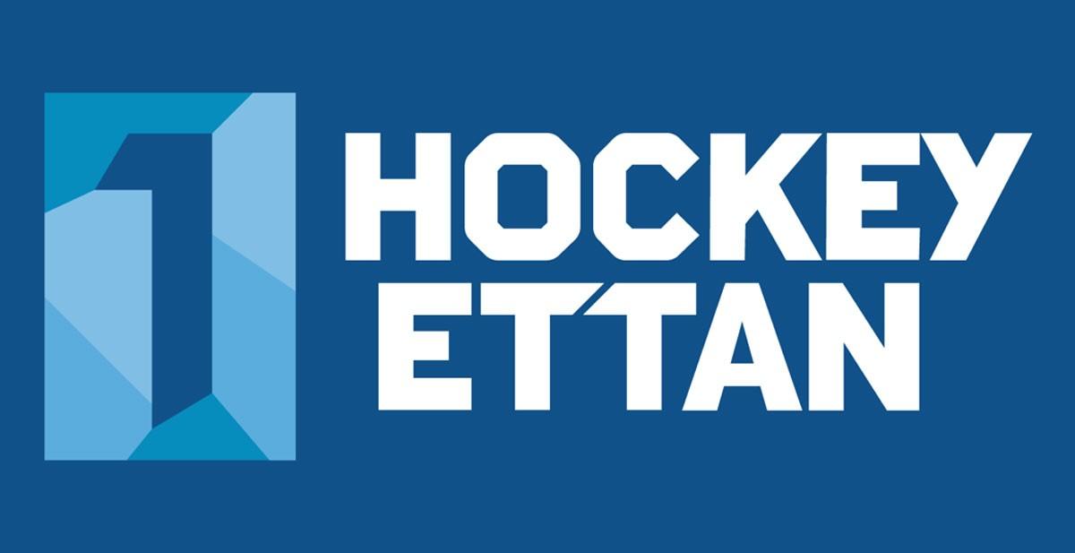Många hockeyklubbar i hockeyettan går ekonomiskt på knäna