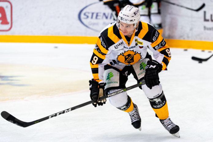 Värvades från Hockeyallsvenskan – nu förlänger forwarden