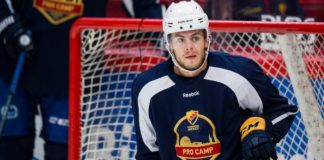 RYKTE Svensken lämnar NHL men nobbar SHL