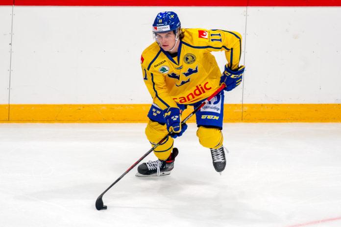 Stjärnan lånas in till hockeyallsvenska klubben