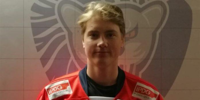 Niclas Svedberg förstärker Sundsvall i Hockeyettan