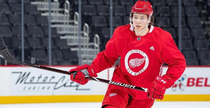 BEKRÄFTAT: Rögle lånar in supertalangen från NHL