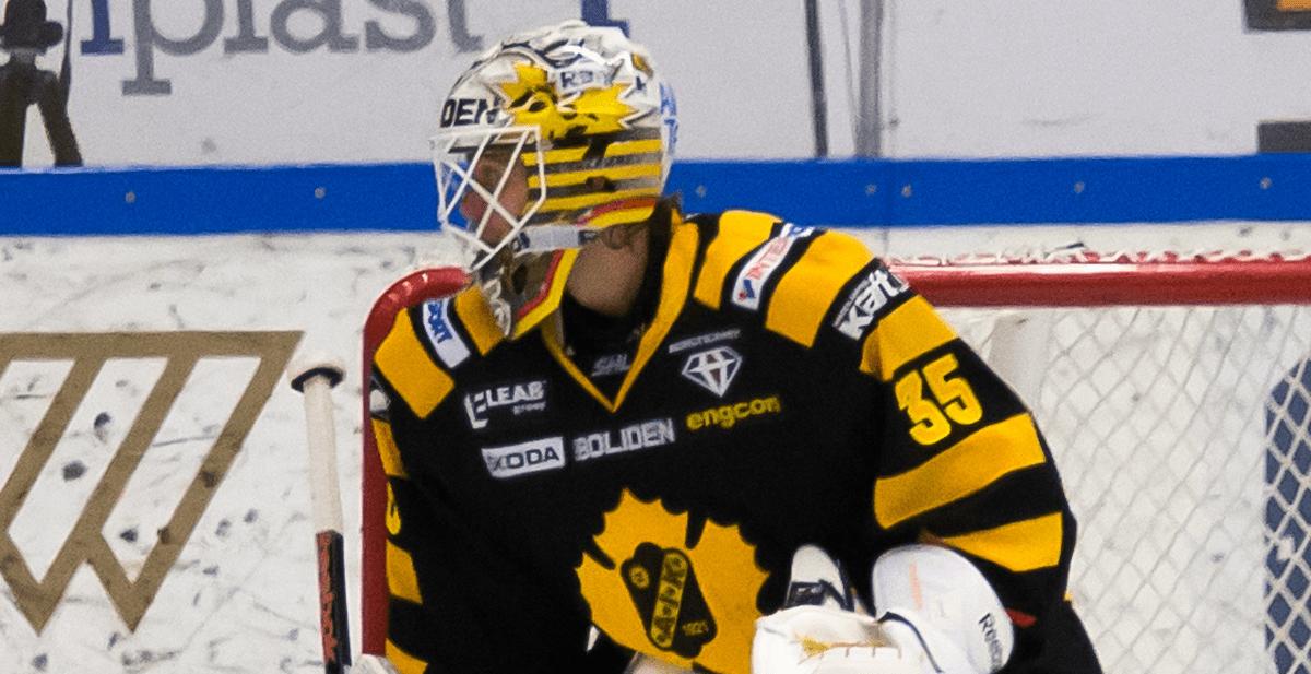 HV71 tar in dubble svenske mästaren på korttidskontrakt
