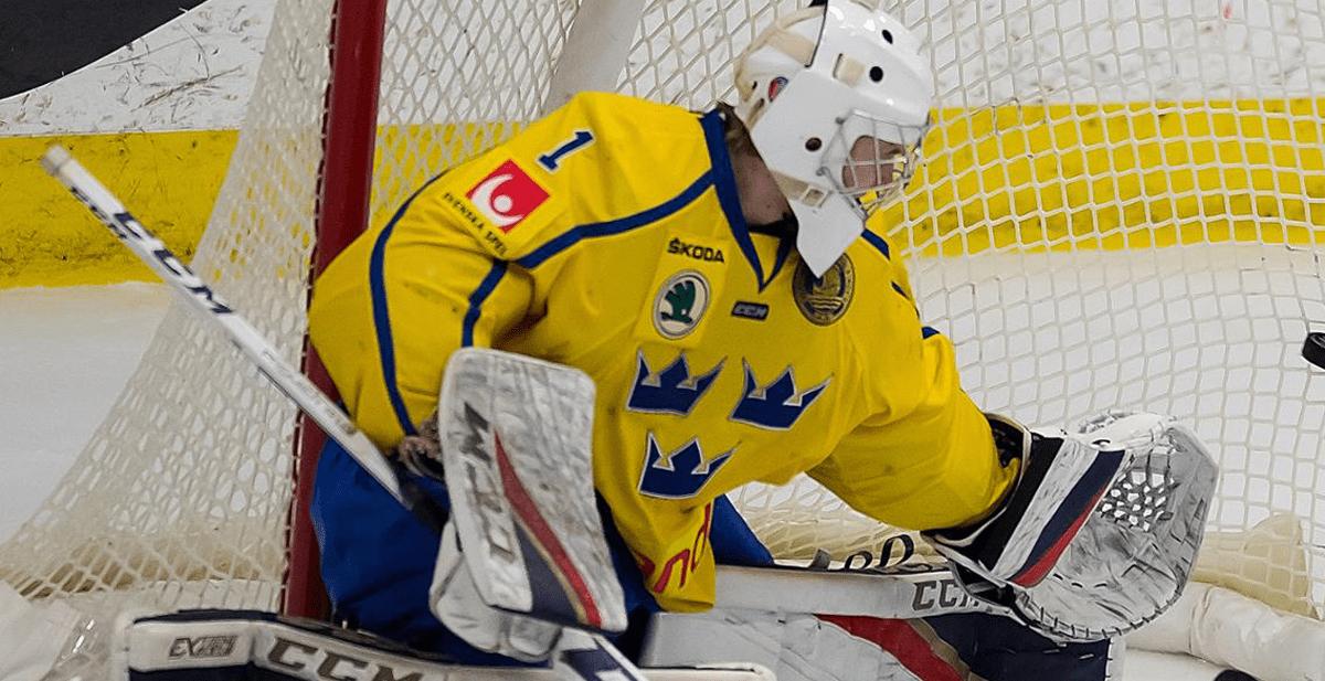 Malmö lånar in förre juniorlandslagsmannen