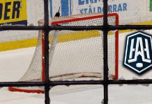 Samtliga övergångar i Hockeyallsvenskan